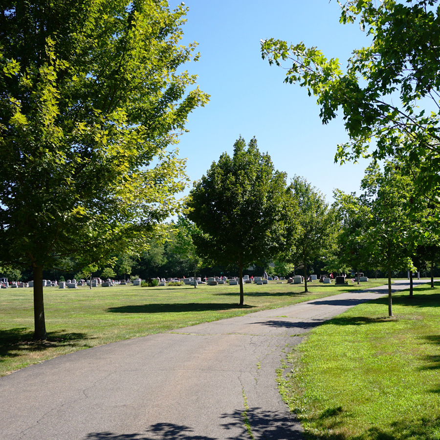 Centerbrook Cemetery Tree-lined Entrance